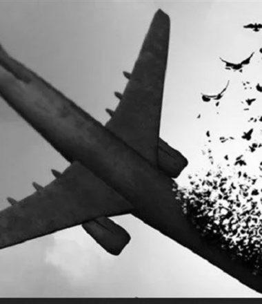 ویژه برنامه تسلیت برای بازماندگان هواپیمایی 752 اوکراین